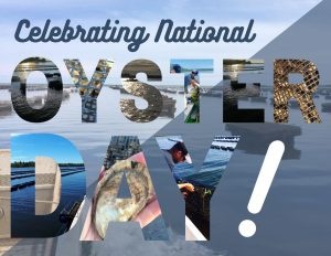 Happy National Oyster Day everyone! Today we celebrate not only this amazing super-food but also our incredible OysterGro farmers who dedicate their lives to cultivating them!